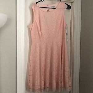 Kensie Pink/Blush Dress